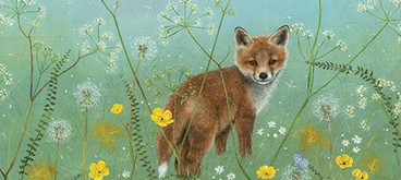 Mayday Fox Cub by Anne Mortimer