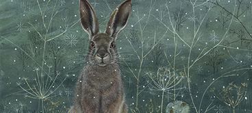 The Winter Hare by Anne Mortimer